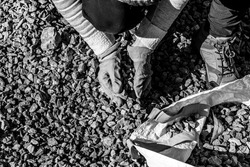 Hands of a woman worker with labour gloves picking up gravel stones to build pavement. Gravel work. Construction site. Black and white background. Rock texture.