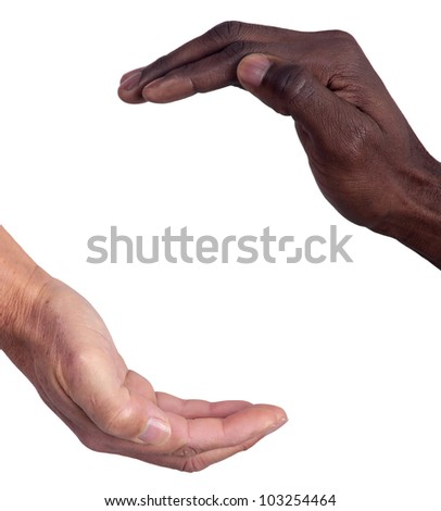 Hands of different races together isolated in white