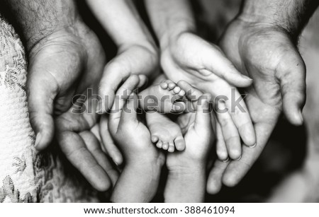 Hands of father, mother, daughter keep little feet baby. Friendly happy family, hands families together (black and white photo)
