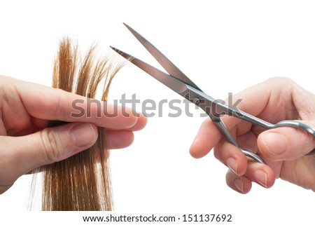 hands of hairdresser cutting woman �� s hair isolated on white