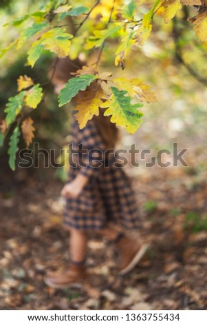 Hands of little girl holding an autumn leaves on autumn background. Season concept.  #1363755434