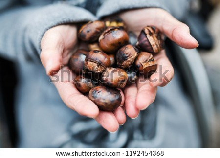 Hands of senior woman holding roasted chestnut outdoors in winter.