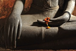 hands of the buddha and dry flower