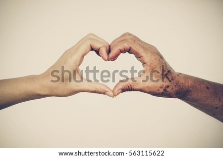hands of the female elderly and ...