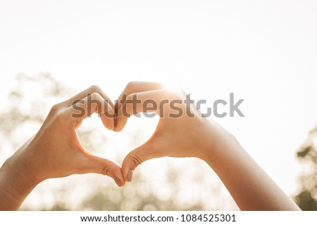 Photo of  Hands of women in heart shape with forest in background.  Good healthy concept.