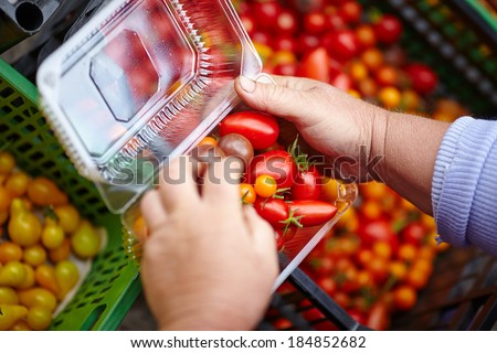 hands packaging fresh tomatoes
