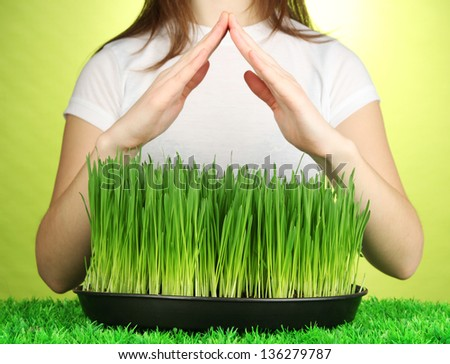 Hands protects growing grass on green background