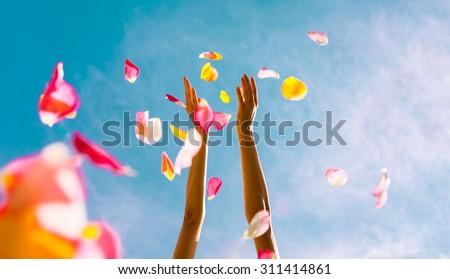 hands throwing rose petals.  ...