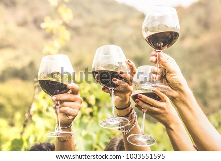 Hands toasting red wine glass and friends having fun cheering at winetasting experience - Young people enjoying harvest time together at farmhouse vineyard countryside - Youth and friendship concept #1033551595