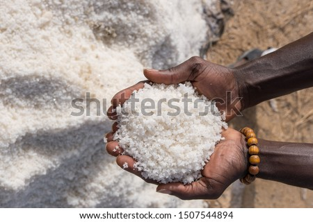 Hands with a handful of salt in the Palmarin mines in Senegal #1507544894