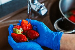 Hands with blue latex gloves disinfecting strawberries to decontaminate the fruit from coronavirus. Washing the fruit with water and lye in the kitchen sink.