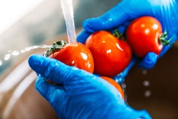 Hands with blue latex gloves disinfecting tomatoes to decontaminate the fruit from coronavirus. Washing the fruit with water and lye to remove viruses.