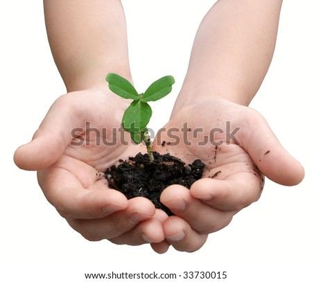 Hands with dirt and a small plant