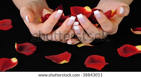 Hands with french manicure holding red rose petals - stock photo