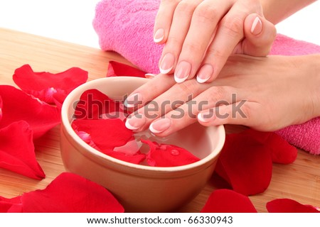 Hands with french manicure  relaxing in bowl of water with rose petals.