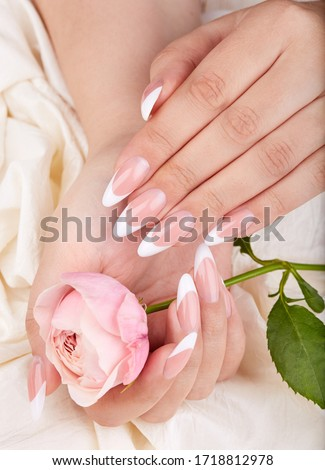 Hands with long artificial french manicured nails holding pink rose flower Stock photo ©