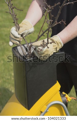 Hands worker who pushed the branch to the crusher - stock photo