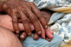 Hands, young and old, on top of each other, comforting each other, Kumrokhali, West Bengal, India