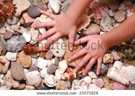 hands young girl on seashells and stones