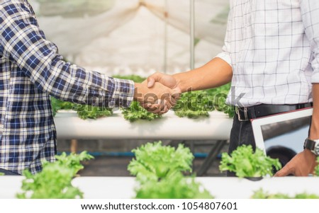 Handshake of business partners, farmers on green farm background. Farmer with tablet for working organic hydroponic vegetable garden at greenhouse.