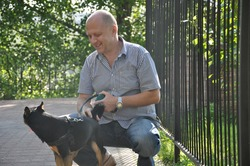 handsome bald man with smiling face near iron fence with beautiful cute black and brown dog pet friend outdoor in summer on green sunny day