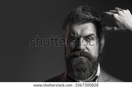 Handsome bearded man with beard