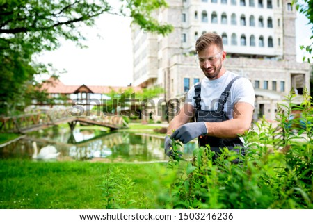 Handsome gardener trimming the bushes using bush scissors #1503246236