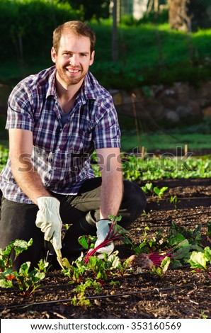 Handsome happy farmer smiling and digging into the vegetable patch garden farm harvesting his produce with a hand spade  #353160569