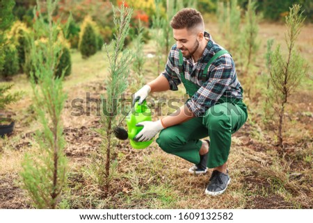 Handsome male gardener working outdoors stock photo