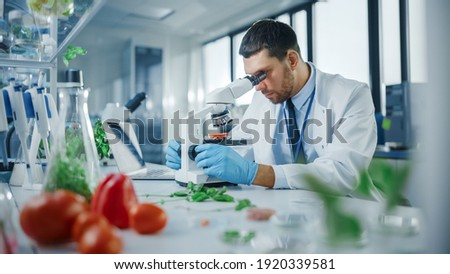 Handsome Male Scientist in Safety Glasses Analyzing a Lab-Grown Tomato Through an Advanced Microscope. Microbiologist Working on Molecule Samples in Modern Laboratory with Technological Equipment. Foto stock ©