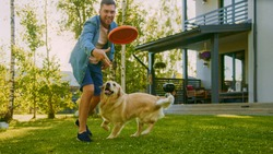 Handsome Man Plays Catch flying disc with Happy Golden Retriever Dog on the Backyard Lawn. Man Has Fun with Loyal Pedigree Dog Outdoors in Summer House Backyard.