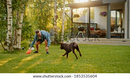 Handsome Man Plays Catch with Happy Brown Labrador Retriever Dog on the Backyard Lawn. Man Has Fun with Loyal Nobel Pedigree Dog Outdoors in Summer House Backyard.