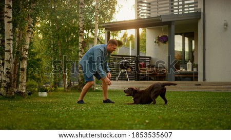 Handsome Man Plays Catch with Happy Brown Labrador Retriever Dog on the Backyard Lawn. Man Has Fun with Loyal Nobel Pedigree Dog Outdoors in Summer House Backyard. Golden Hour Shot