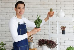 Handsome man short black hair wear t shirt jean apron dimple smiling standing presenting looking at camera holding cactus pot in white brick room background surrounded air filtering plants. Fresh warm