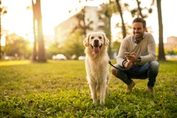 Handsome man walking his dog while texting outdoors.