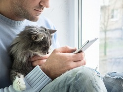 Handsome man with mobile phone and cute kitten