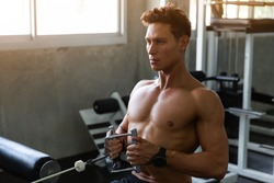 Handsome Muscular Fitness man in the gym, training hard and pulling weights in seated cable row machine, Athlete makes exercise, Bodybuilder, Sport fitness and muscles concept
