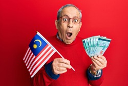 Handsome senior man with grey hair holding malaysia flag and malaysian ringgit banknotes afraid and shocked with surprise and amazed expression, fear and excited face.