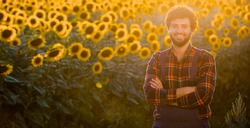 Handsome young farmer standing in the middle of a golden sunflower field with his arms crossed and smiling, during a majestic sunrise.