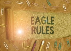 Handwriting text Eagle Rules. Concept meaning a huge set of design rules which your layout needs to pass.