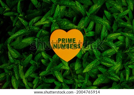 Handwriting text Prime Numbers. Word for a positive integer containing factors of one and itself Heart Shaped Paper On Top Of Outdoor Nature Leafy Plant Bush. Stock fotó ©