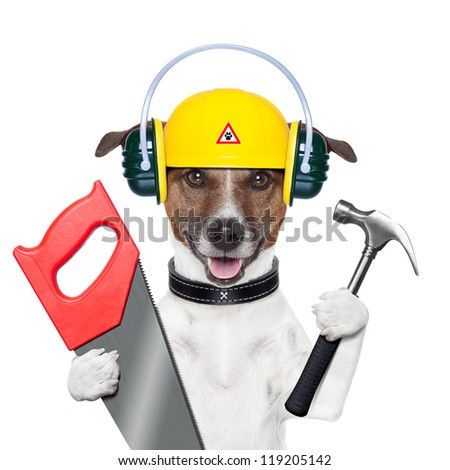 handyman and craftsman dog with hammer and saw