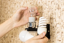 handyman changing electricity efficiency light bulb concept. various light bulbs at person hand. replacing lightbulb at wall lamp.