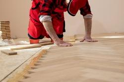 Handyman installing wooden flooring, Worker laying parquet flooring. Worker installing wooden laminate flooring.  Parquet and carpenter concept,