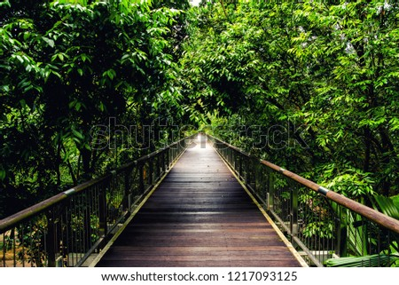 Hanging bridge at Botanical Garden , Putrajaya , Malaysia.