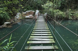 hanging bridge in forest when hiking outdoor