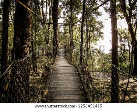 Hanging Bridge, Lolegaon #1256451415