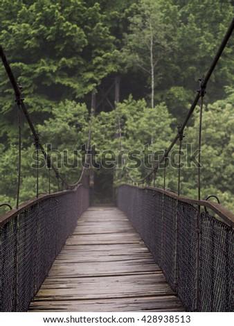 Hanging bridge. Suspension bridge, bridge through the forest. #428938513