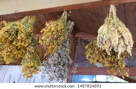 Hanging bunches of herbs and flowers