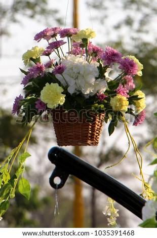 hanging flower pot #1035391468
